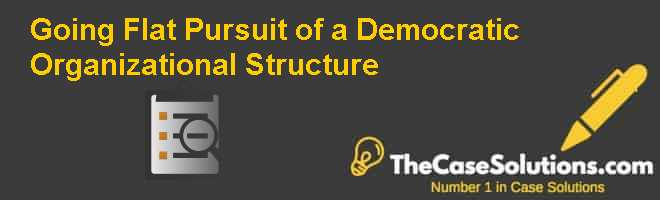 Going Flat: Pursuit of a Democratic Organizational Structure Case Solution